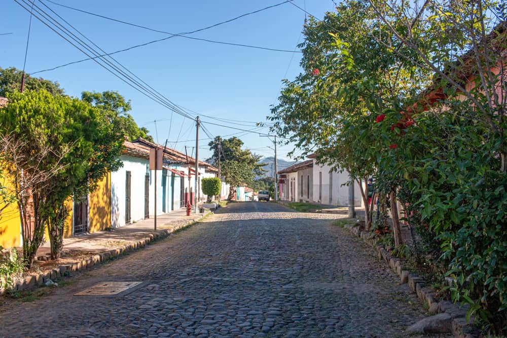 Cobblestone street lined with trees and colourful houses.