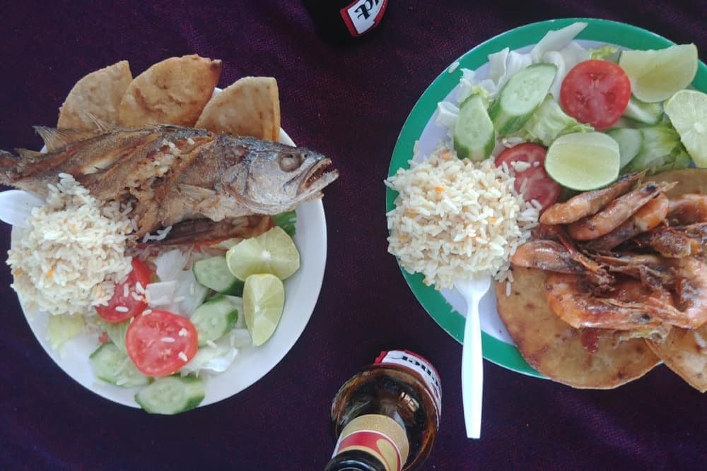 Two plates with rice, tortillas, vegetables and grilled fish.